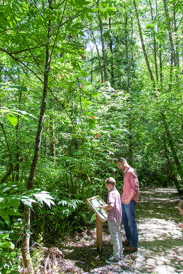 Kilchis Point Interpretive Trails History Hiking