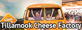Tillamook Cheese Factory Cheddar Cheese