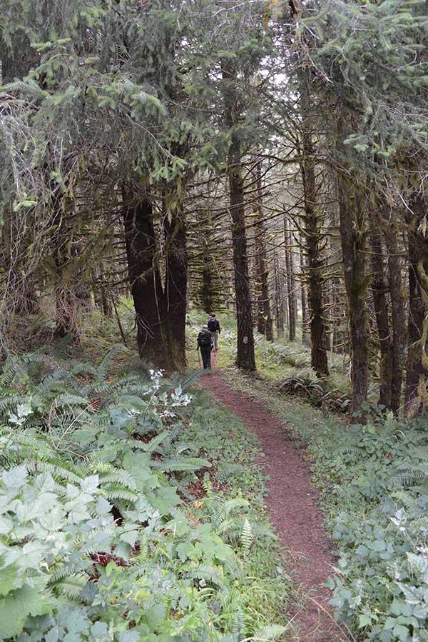 Hebo Oregon Hiking