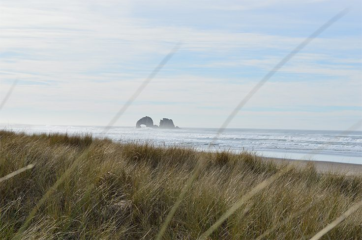 Looking through tall grass at the beach and big rocks in the distance at Rockaway Beach