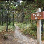 Wooded trail with trailhead sign in foreground
