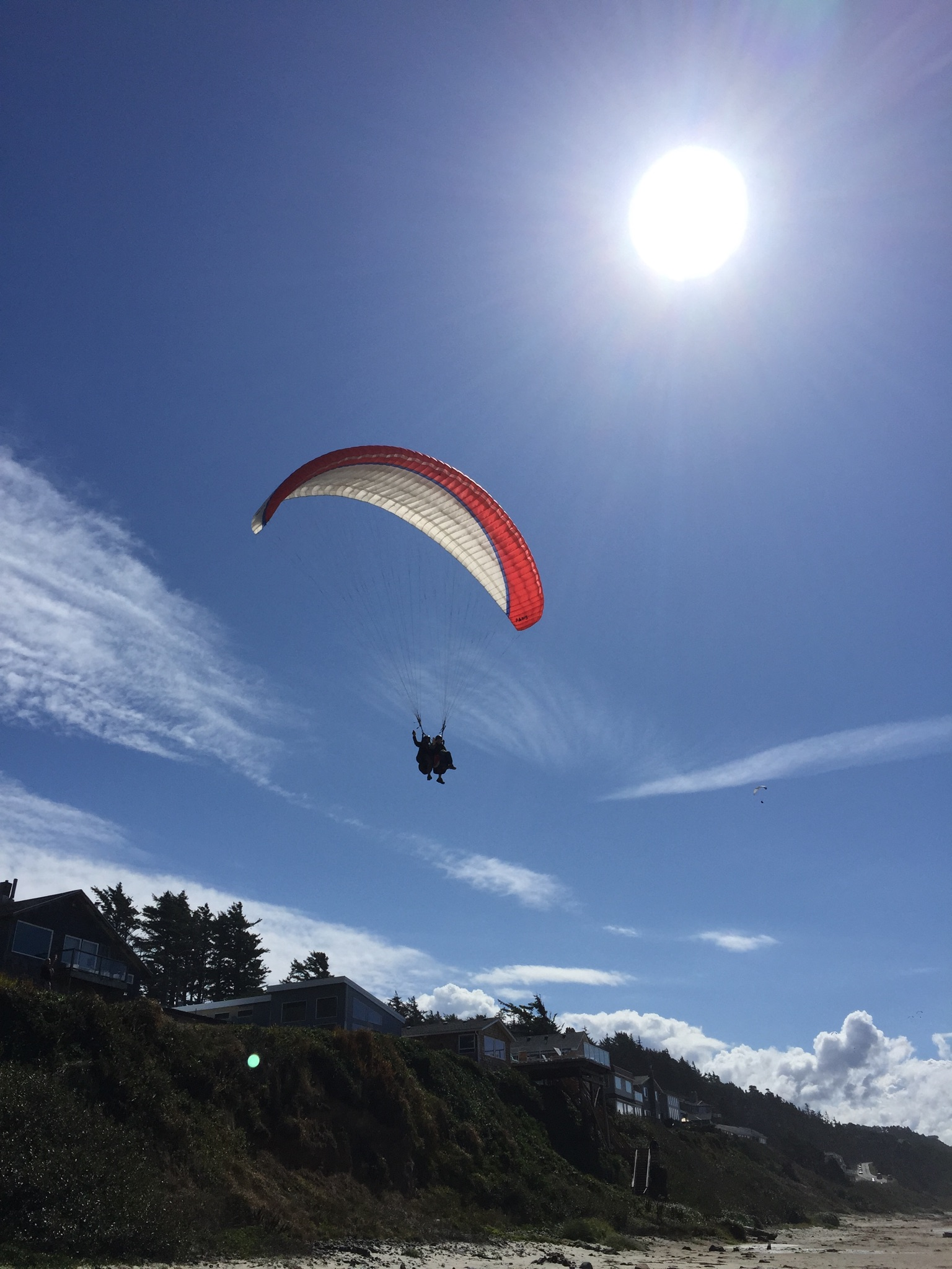 Coming in for a landing on the beach