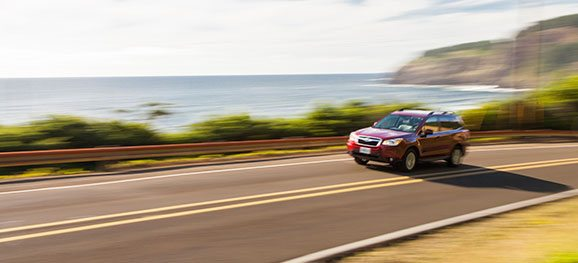Enjoy the Drive, Explore the Coast