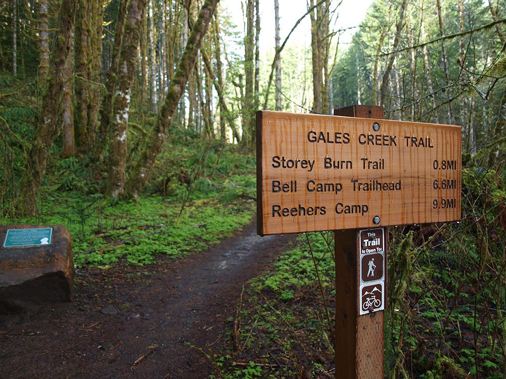 Gales-creek-trailhead