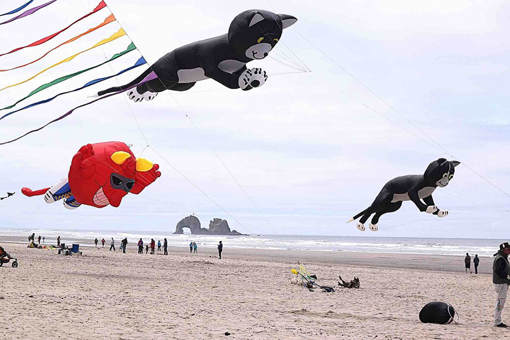 Kite Festival Rockaway Beach Oregon