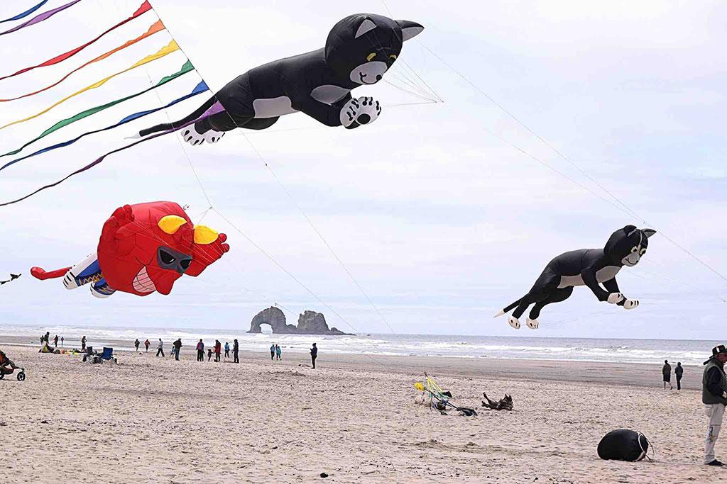 Kite Festival Rockaway Beach Oregon