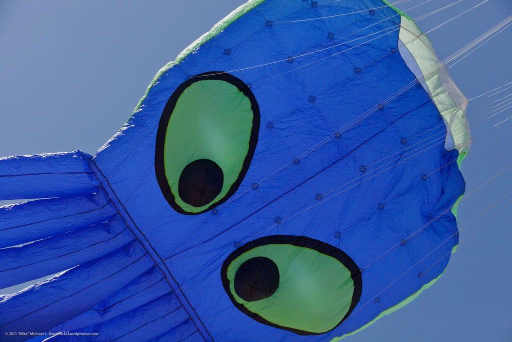 Rockaway Kite Festival Octopus
