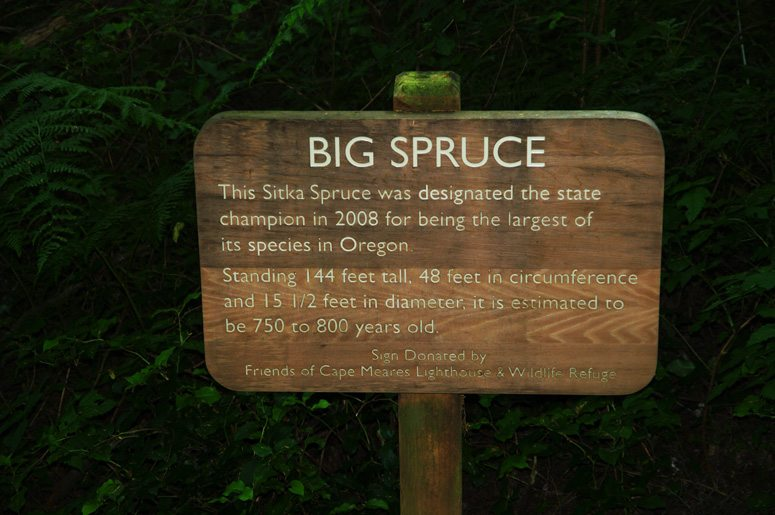Big Sitka Spruce sign