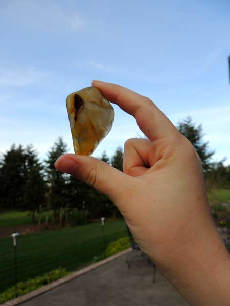 A carnelian agate after first 3 steps.