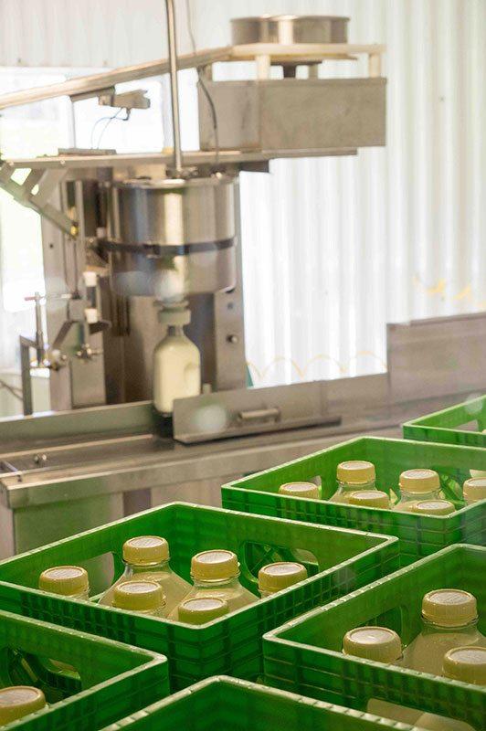 Bennett Family Farm milk preparation