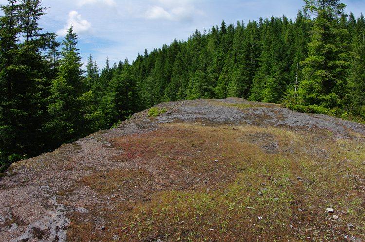 Mt. Hebo rock platform