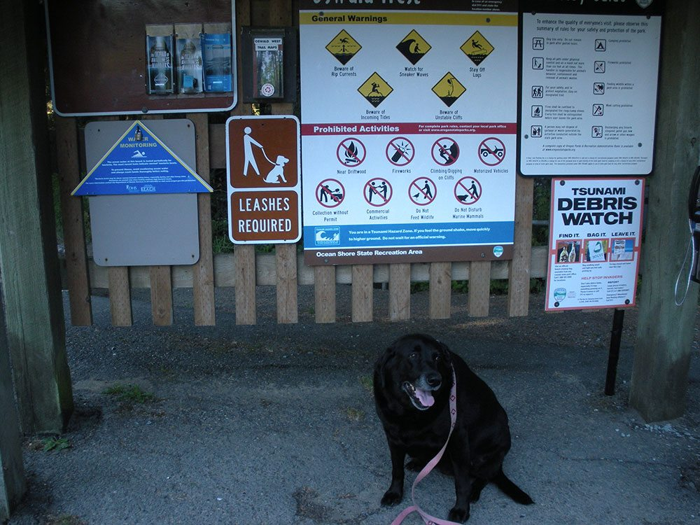 Black lab lease required sign