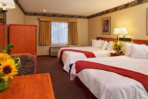 Hotel room with two beds and two lamps, sunflowers on the tables