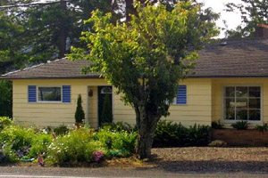 Small yellow house with short tree in front