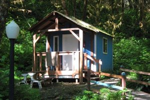 Small blue house on campground in the woods