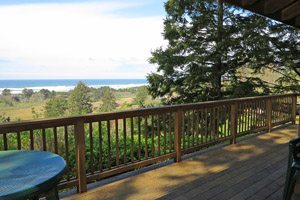 Balcony with view of trees and ocean