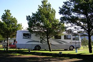 Big RV parked next to two trees