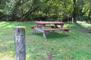 picnic table on an empty campsite