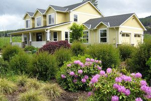 Big yellow house with rhododendrons and grasses surrounding
