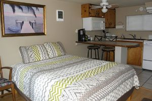 Bed and mini kitchen area