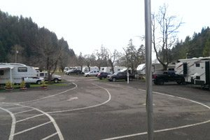 Wilson River RV Park: campers lined up in parking lot