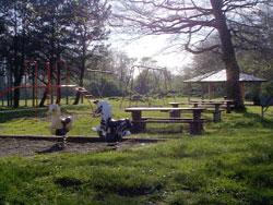 Al Griffin Memorial Park Campground