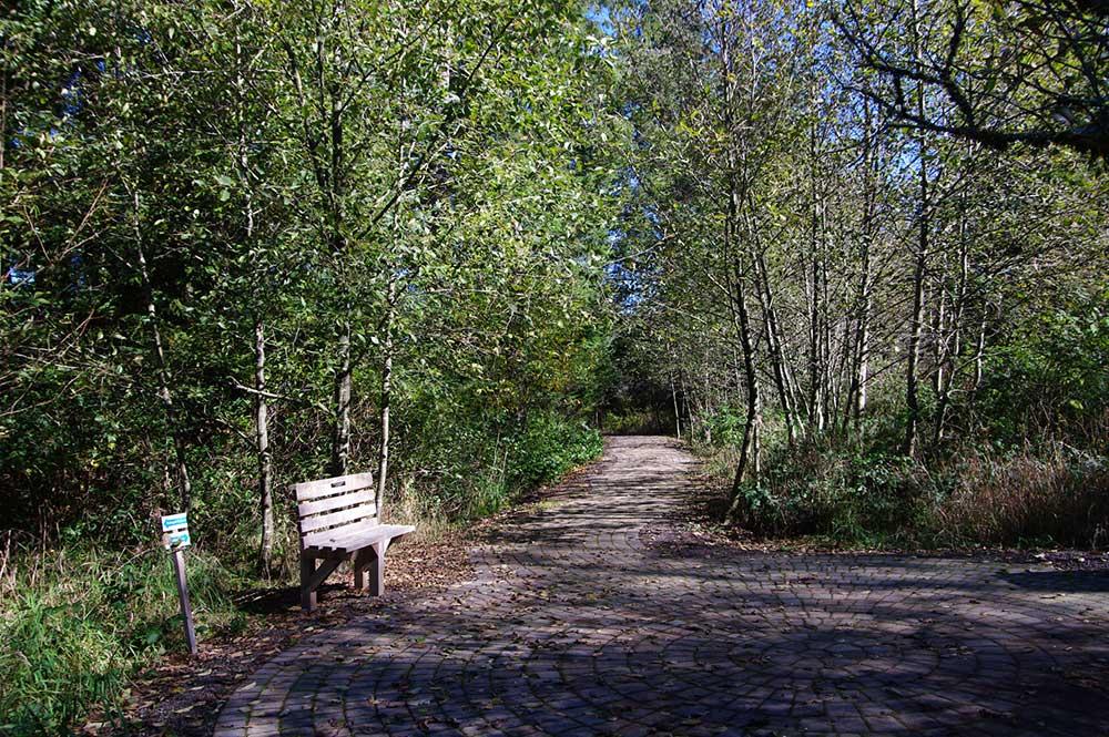 Kilchis Point trail