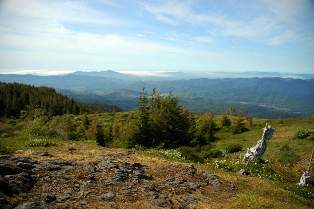 Mt Hebo summit