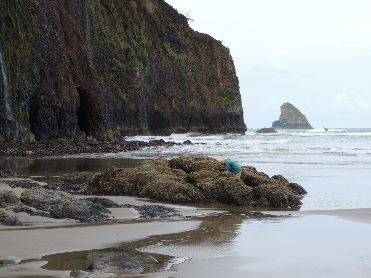 Time your tillamook coast activities with the tides tillamook coast nvjuhfo Choice Image