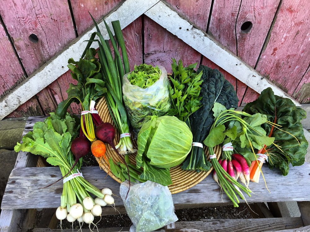 Pile of fresh vegetables in front of rustic wooden backdrop