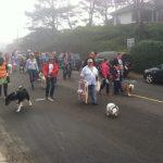 Muttzanita Parade