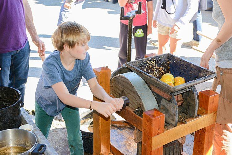 Harvest Festival Alder Creek Farm