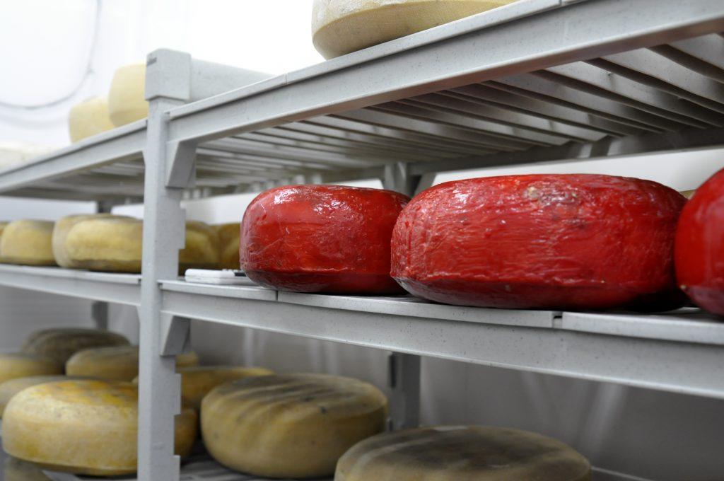 3 Nestucca Bay cheeses