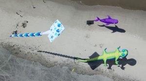 Rockaway Beach Kite Festival