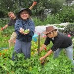 Lower Nehalem Community Trust