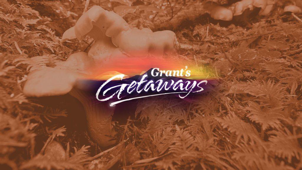 GG feature grants getaway wild harvest