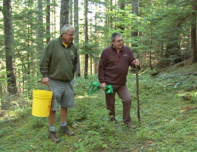 grants getaway wild harvest 1 2021 10